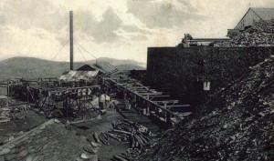 silvarosa_mina-insua-ca-1910c