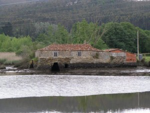 20090513-ortigueira-030-c