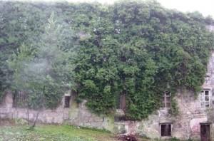 14 Ruinas, otoño 2003